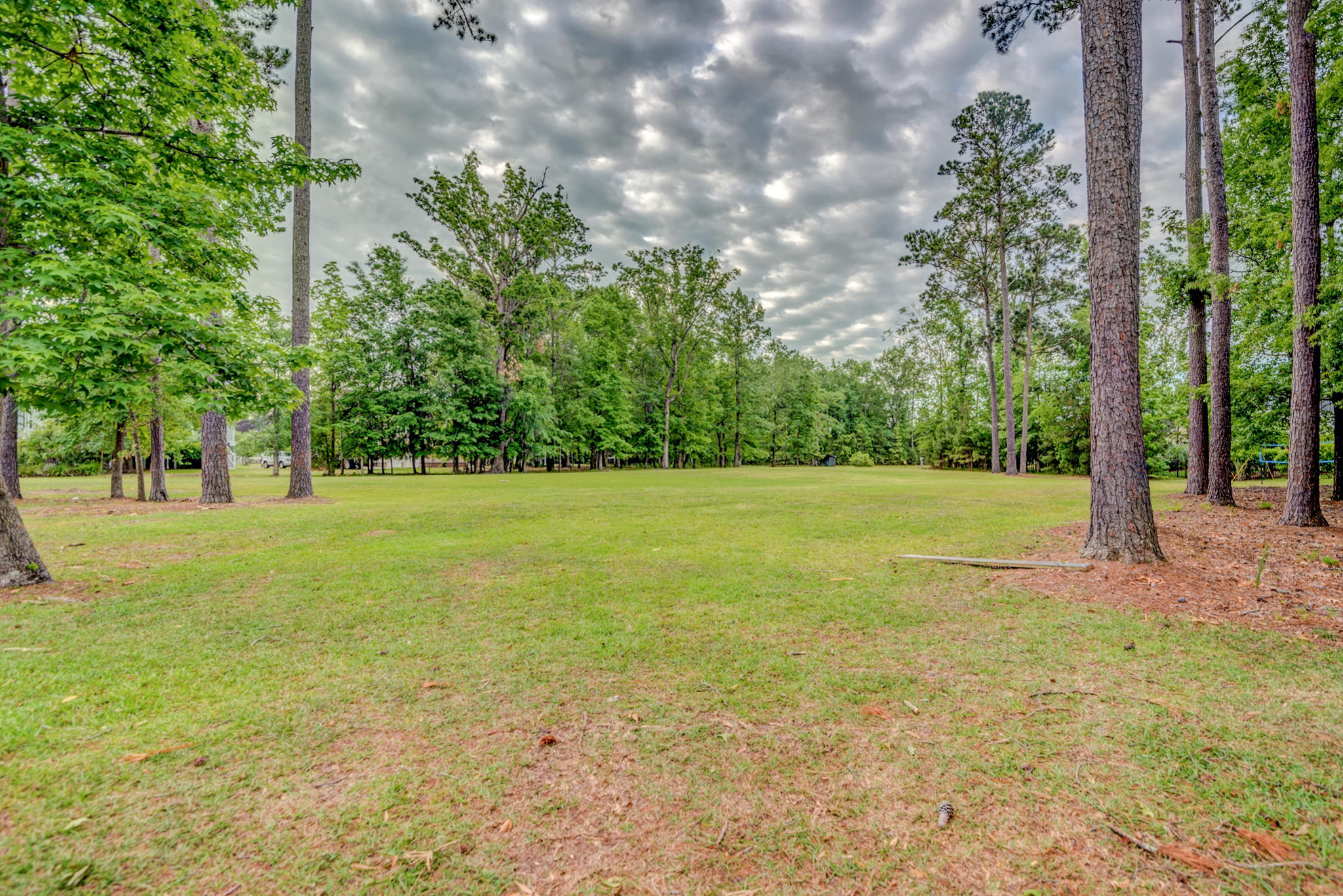 1142 Ayers Plantation Way Mount Pleasant, SC 29466