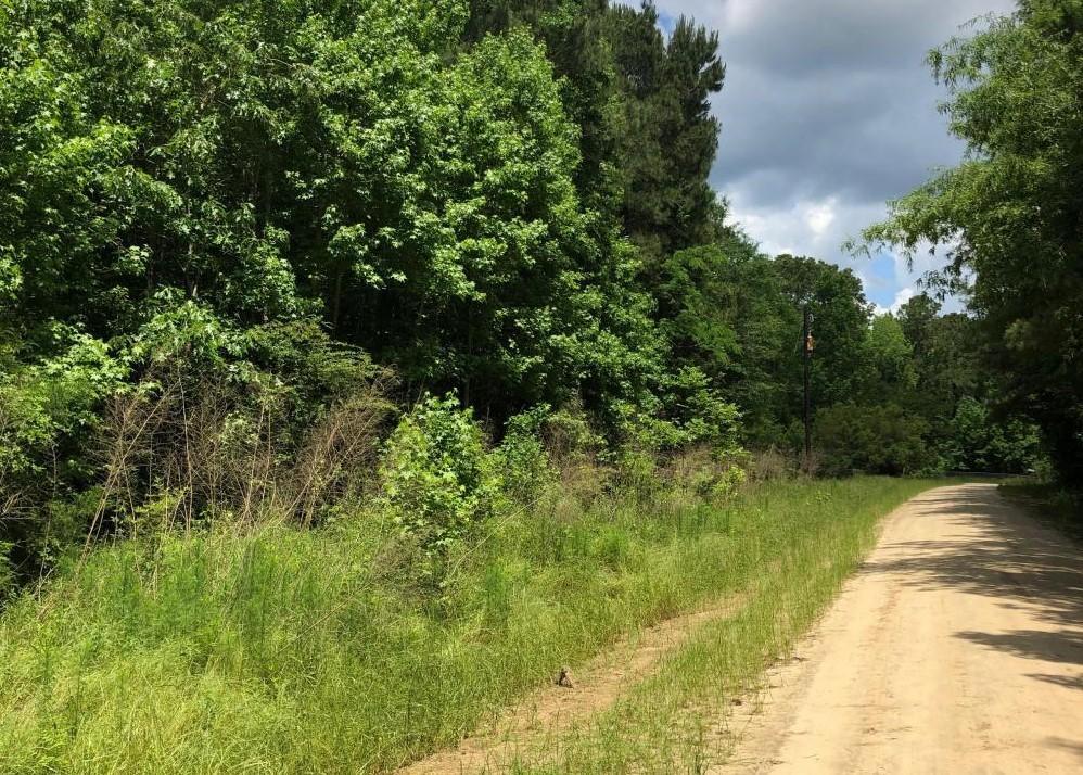 195 Alton Way Cottageville, SC 29435