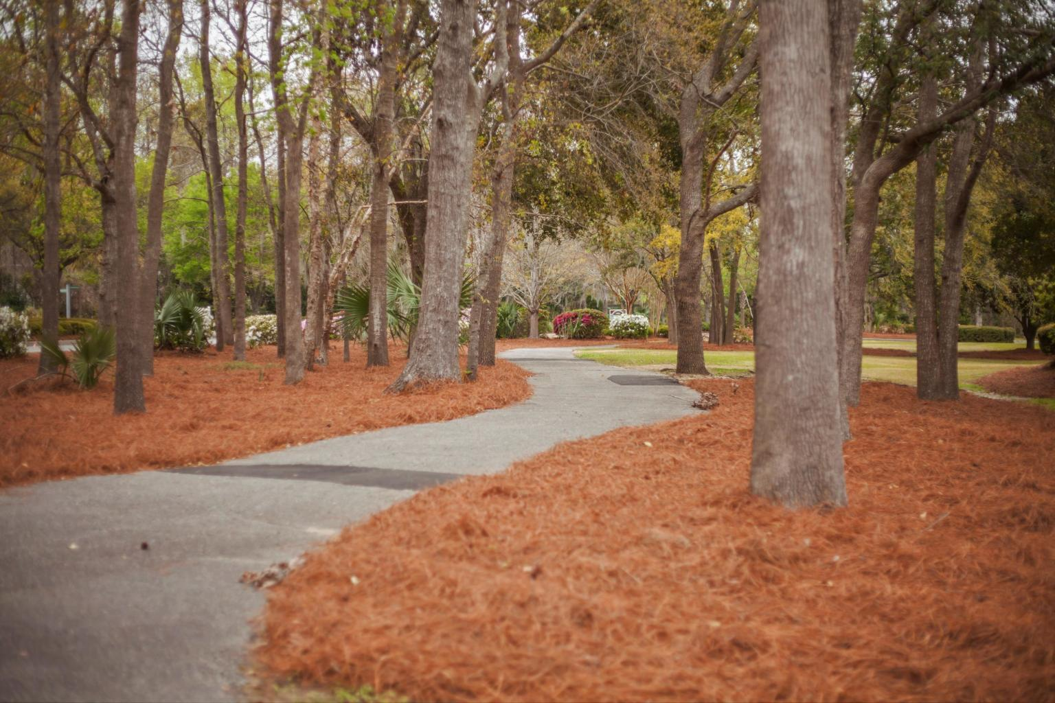 Planters Pointe Homes For Sale - 2714 Wild Dogwood, Mount Pleasant, SC - 4