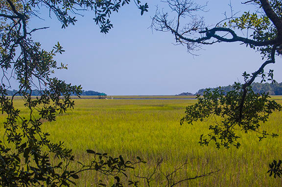 8707 Middleton Point Lane Edisto Island, SC 29438