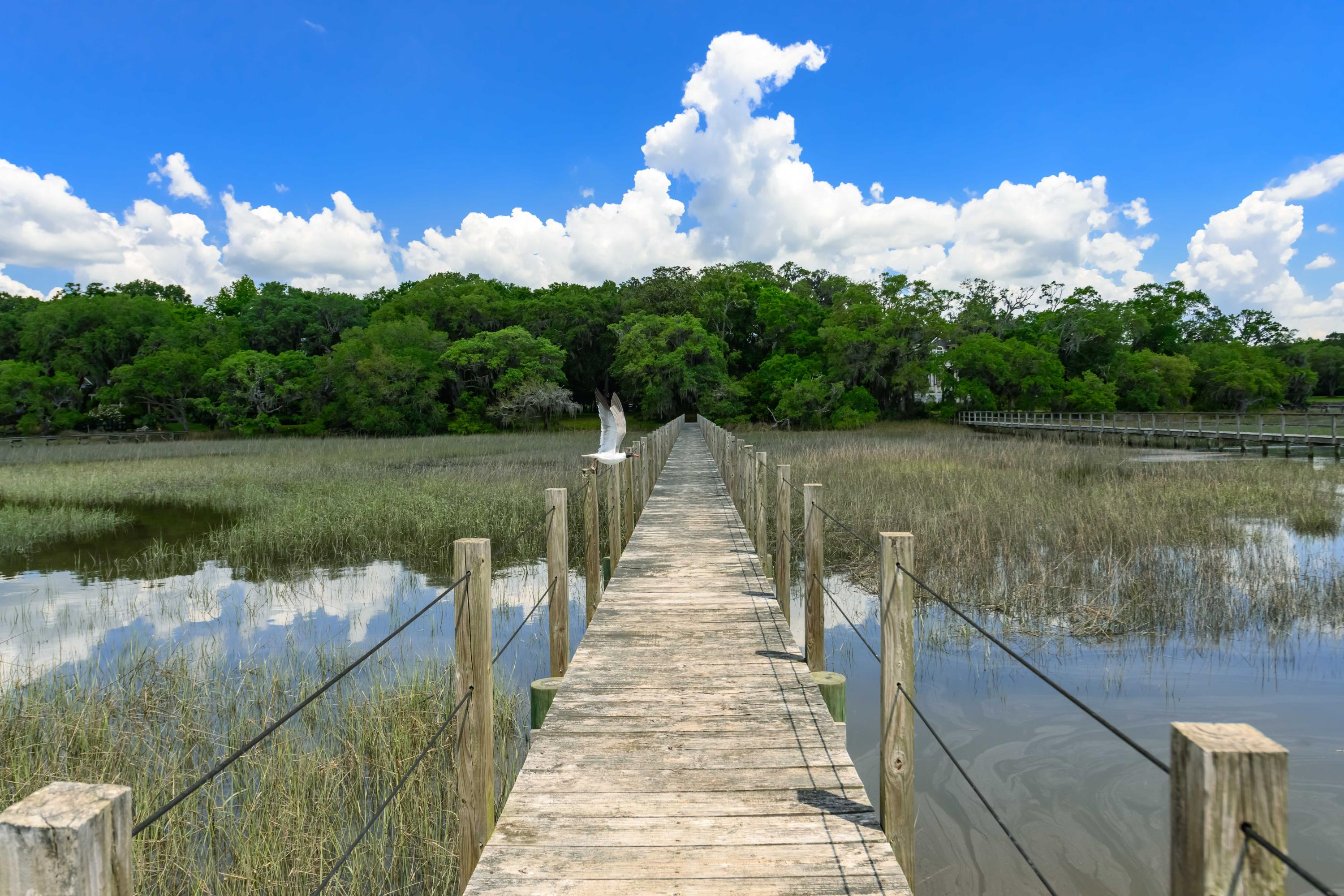 Lot 10 The Hideaway Point Hollywood, SC 29449
