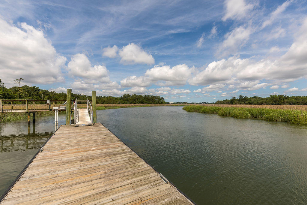 Etiwan Pointe Homes For Sale - 241 Etiwan Pointe, Mount Pleasant, SC - 29