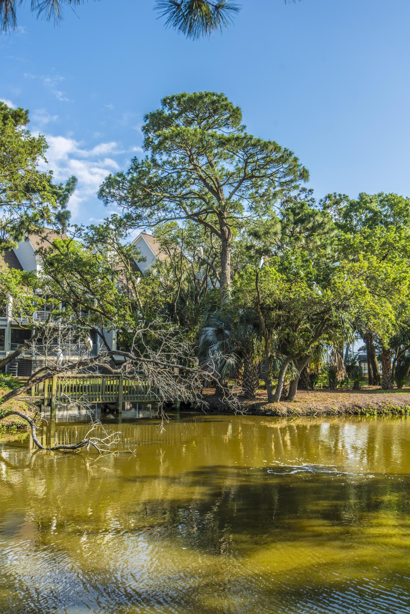 Little Oak Island Homes For Sale - 251 Little Oak, Folly Beach, SC - 7