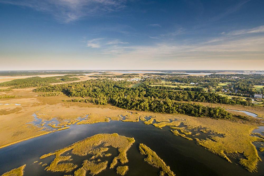 Daniel Island Park Lots For Sale - 434 Fish Tale, Charleston, SC - 1
