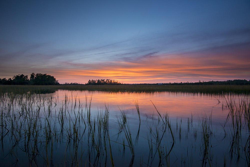 Daniel Island Park Lots For Sale - 434 Fish Tale, Charleston, SC - 0