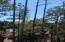 2954 River Vista Way, Mount Pleasant, SC 29466