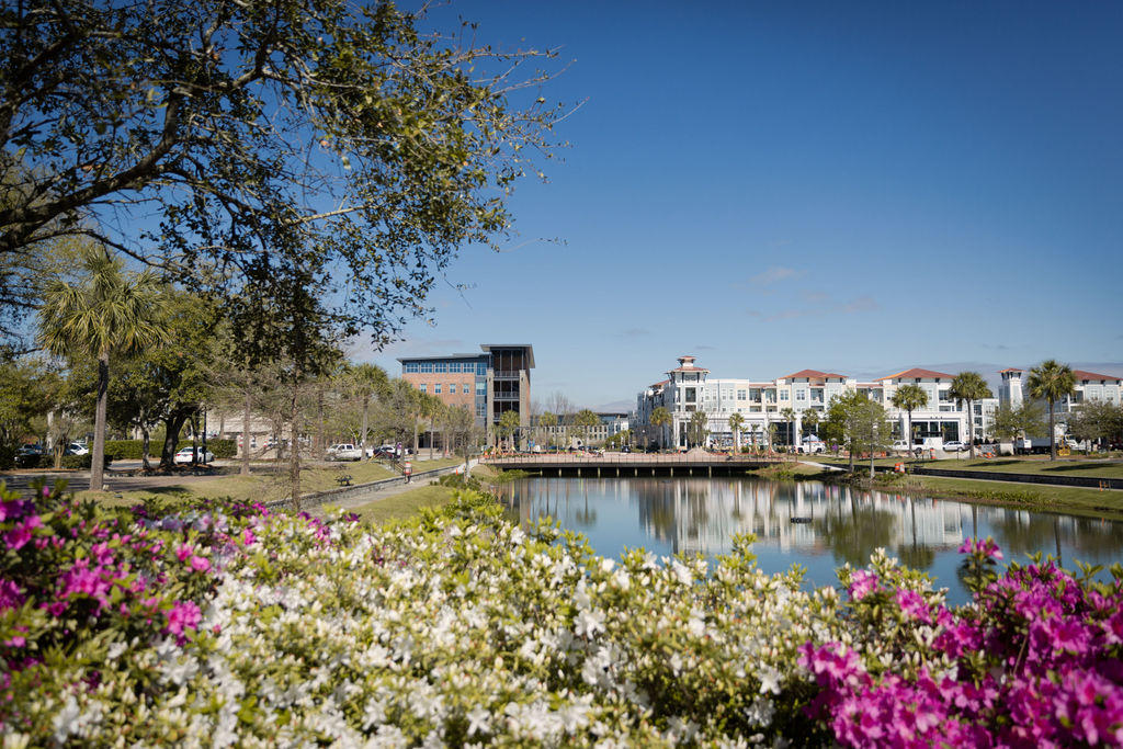 Daniel Island Park Homes For Sale - 117 Brailsford, Charleston, SC - 82