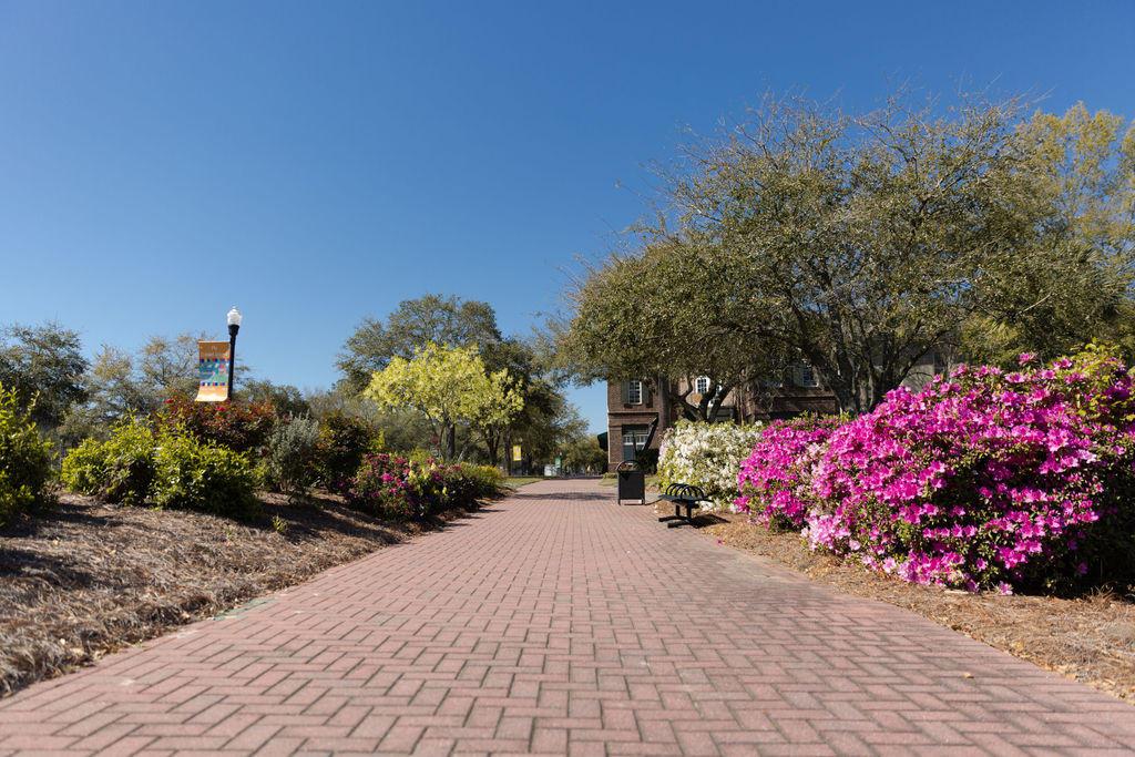 Daniel Island Park Homes For Sale - 802 Beckon, Charleston, SC - 52