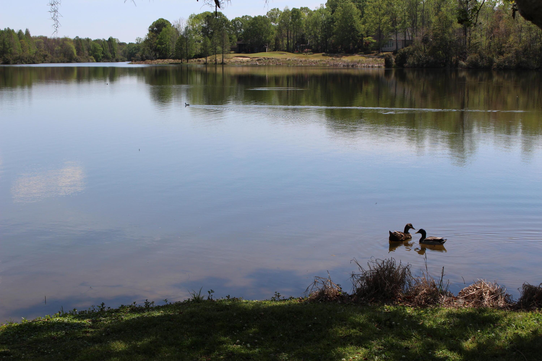 149 Dasharon Lane Goose Creek, SC 29445