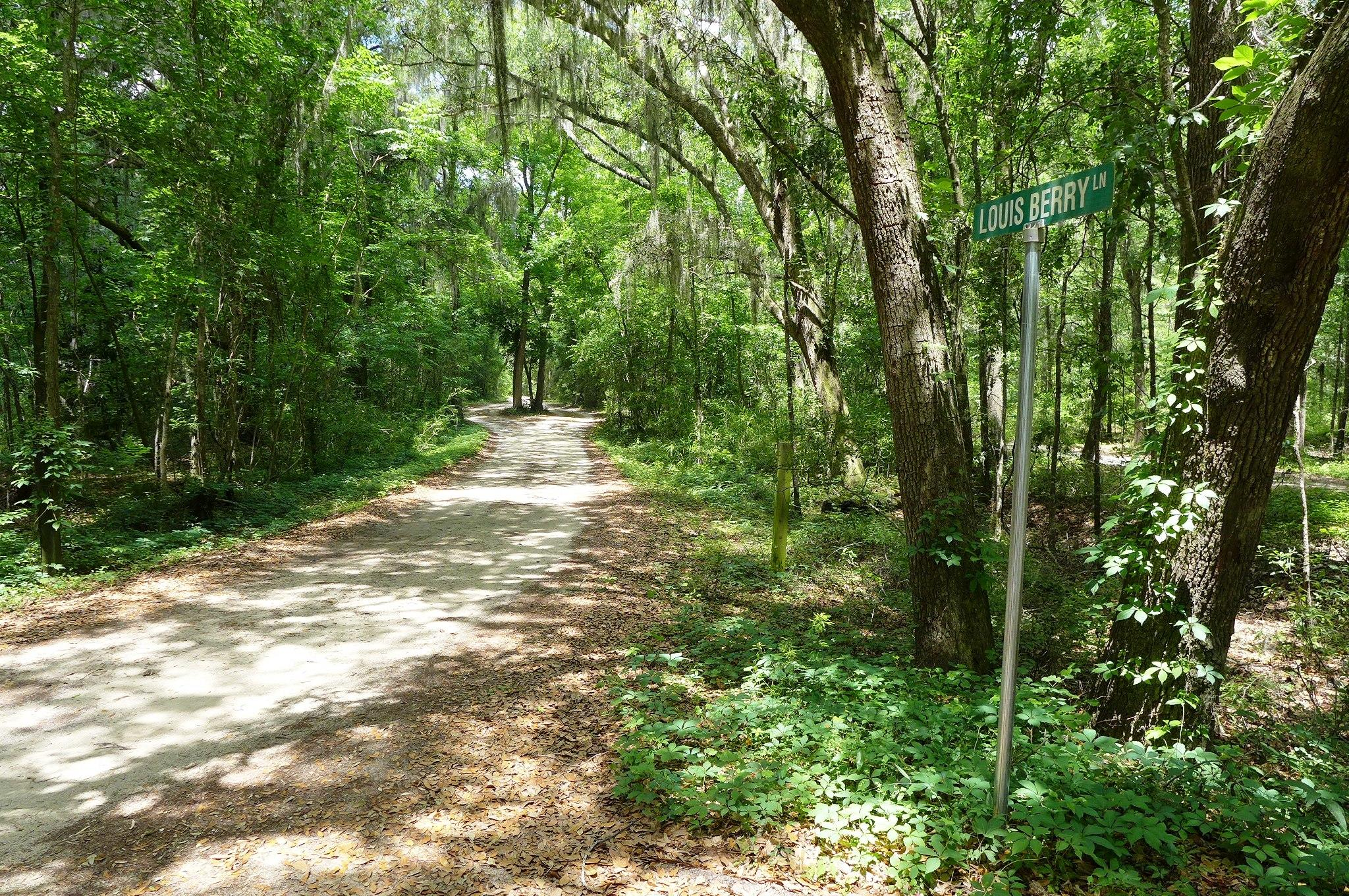7890 Louis Berry Lane Edisto Island, SC 29438