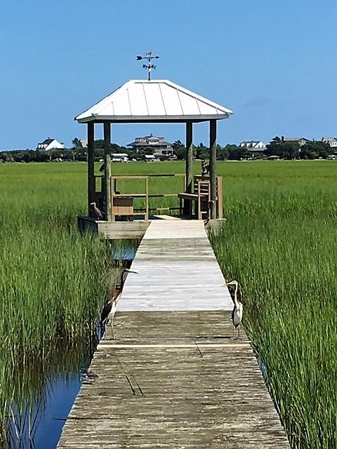 Wildberry Way Pawleys Island, SC 29585