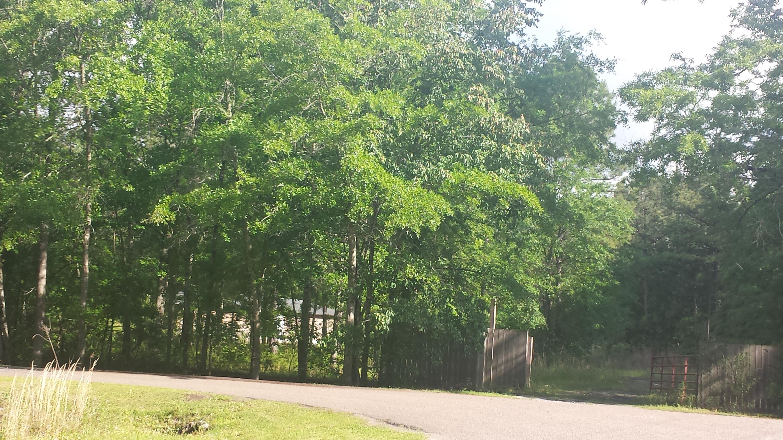 180 Big Creek Drive Moncks Corner, SC 29461