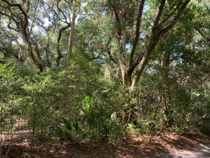 3308  The Lookout   Johns Island, SC 29455