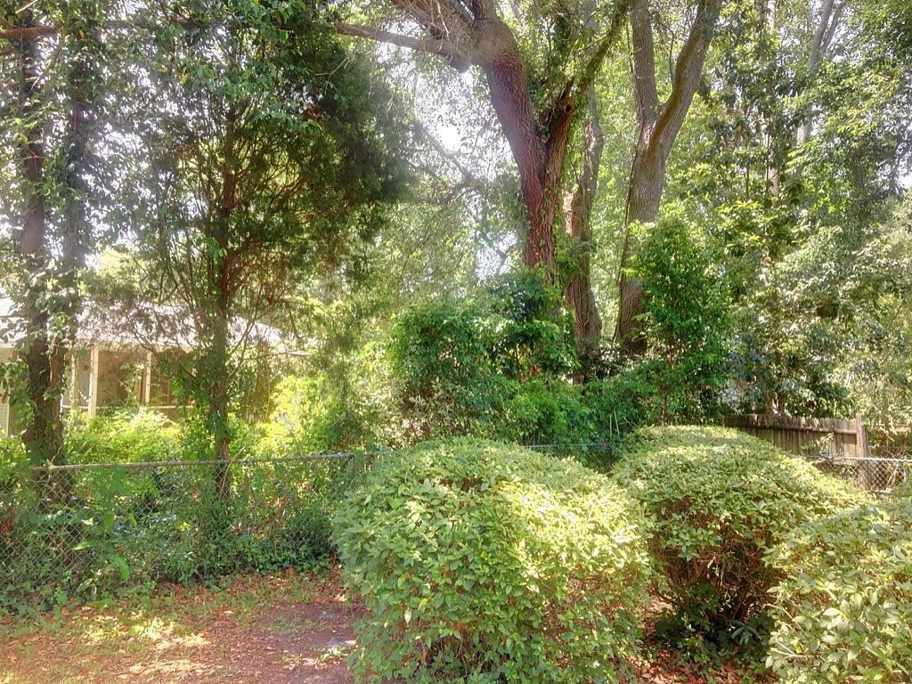Shemwood Homes For Sale - 1146 Saint Elizabeth, Mount Pleasant, SC - 3