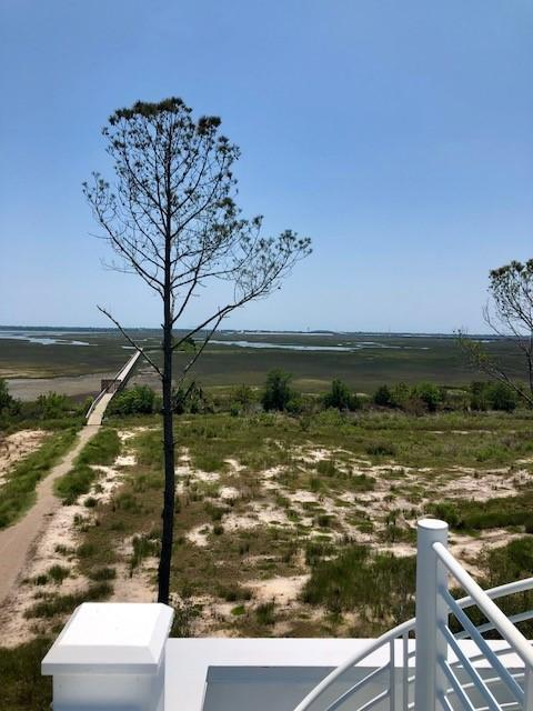 Oyster Point Homes For Sale - 1659 Red Tide, Mount Pleasant, SC - 40