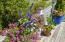 Back deck flower garden