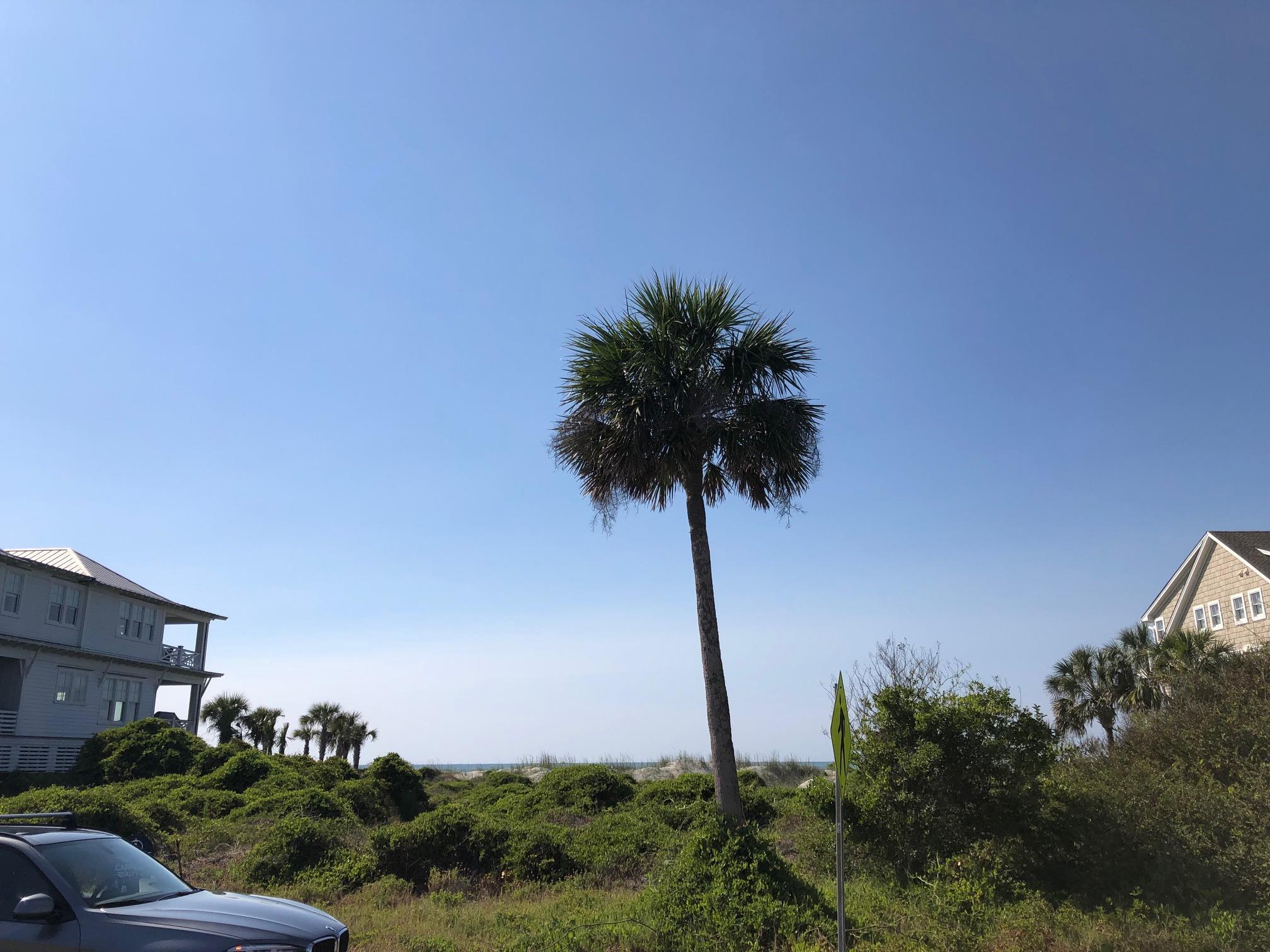 600 Ocean Boulevard Isle Of Palms, SC 29451