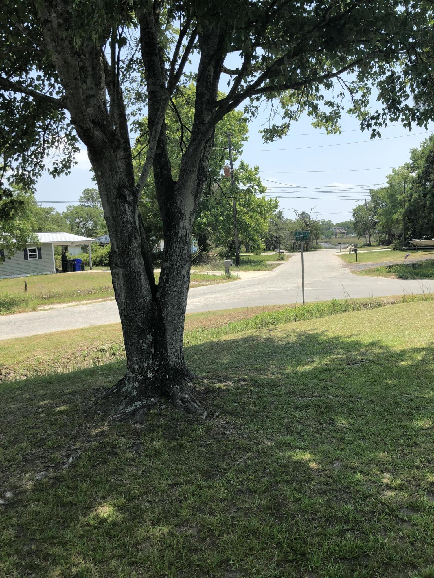 Lantana Homes For Sale - 325 Lantana, Charleston, SC - 10
