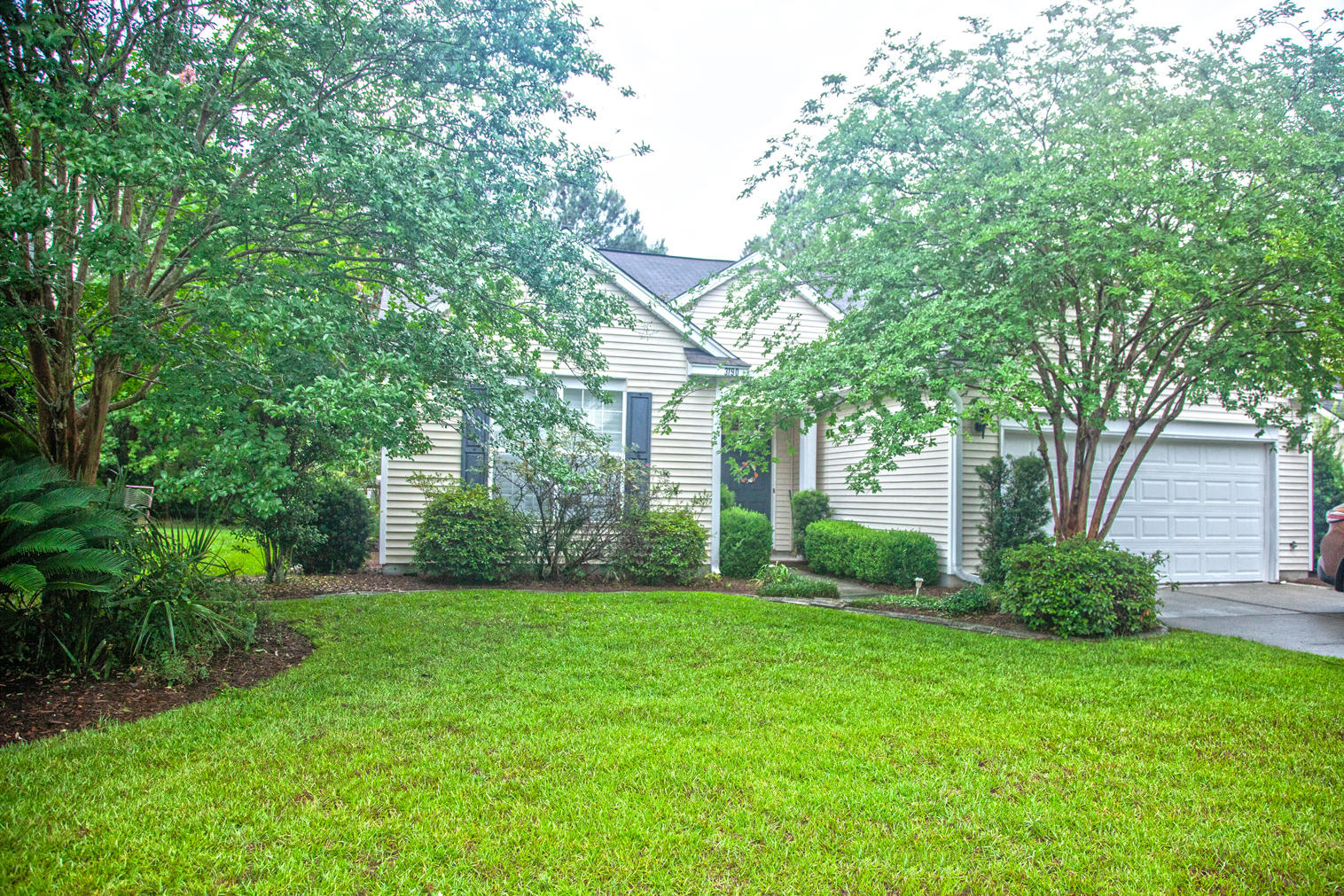 3190 John Bartram Place Mount Pleasant, SC 29466