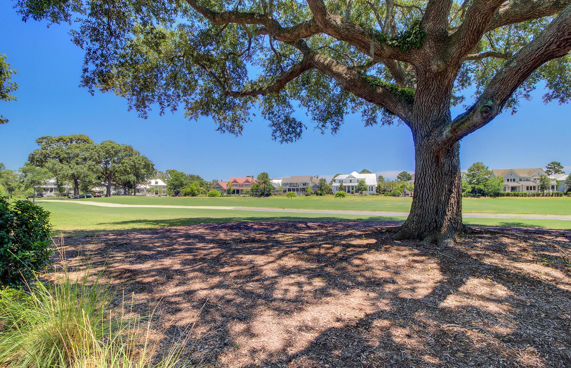 Daniel Island Homes For Sale - 135 Brailsford, Charleston, SC - 42