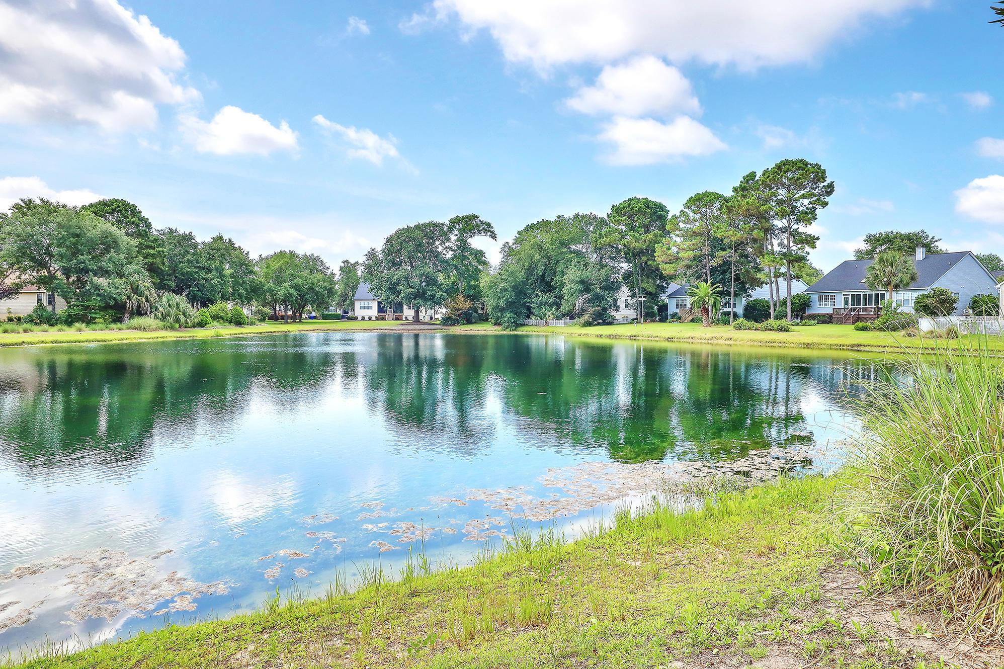 Seaside Farms Homes For Sale - 1244 Palmetto Peninsula, Mount Pleasant, SC - 29