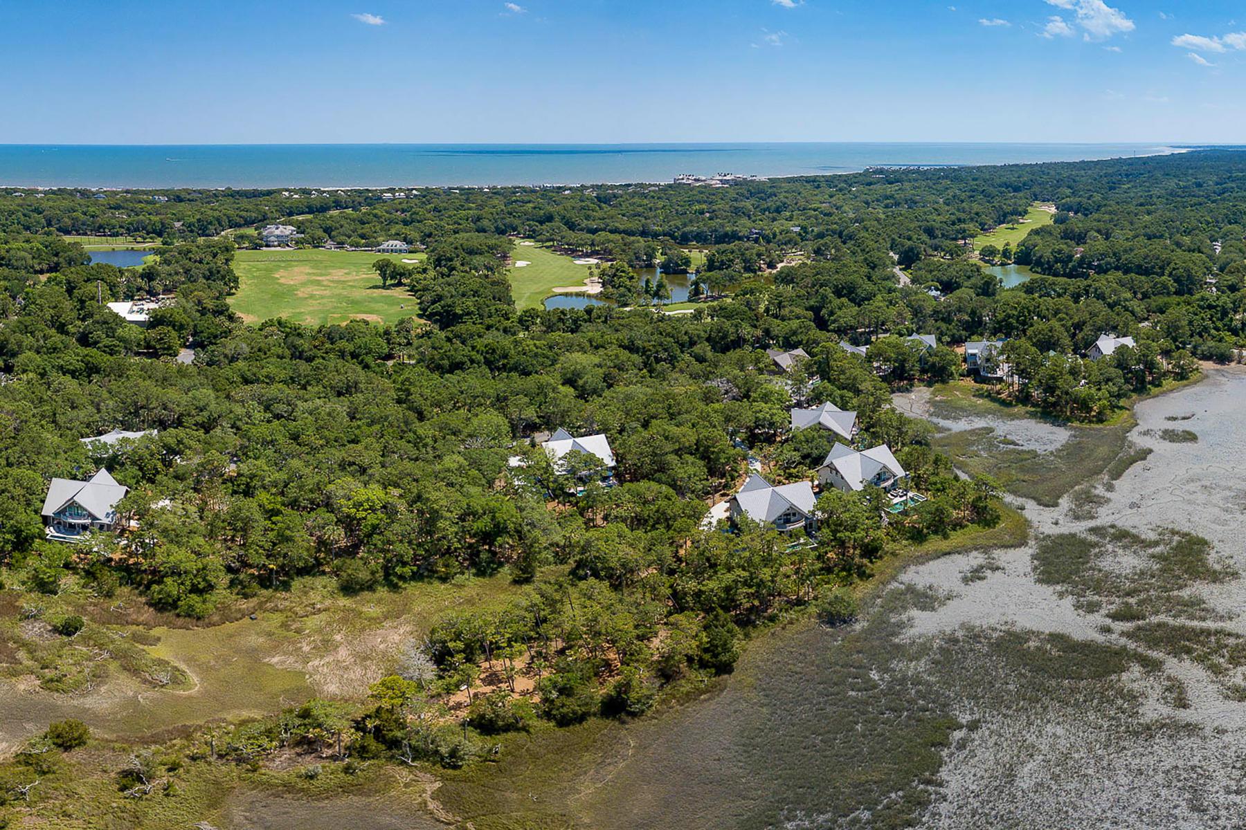 Kiawah Island Homes For Sale - 115 Halona, Kiawah Island, SC - 0