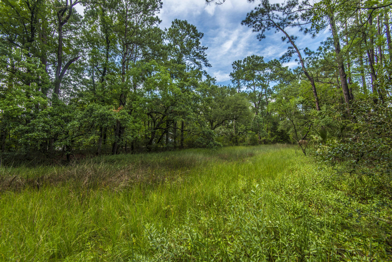 West Ashley Plantation Homes For Sale - 1854 Hutton, Charleston, SC - 32
