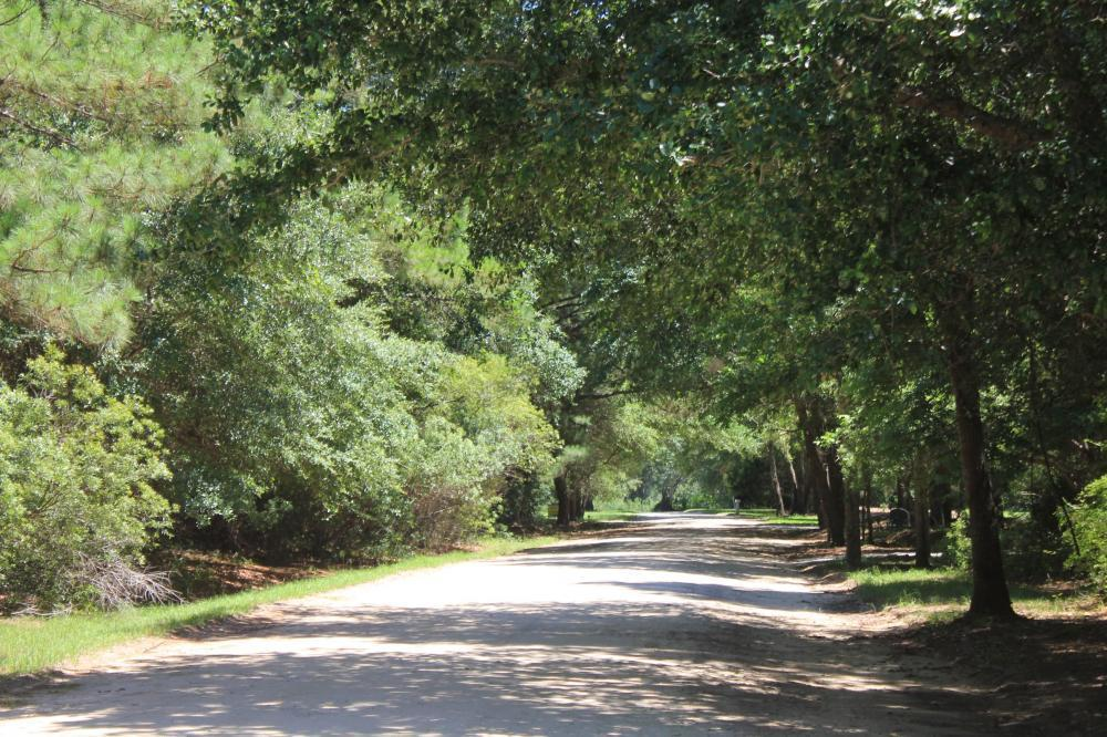 Mossey Grove Rd Awendaw, SC 29429