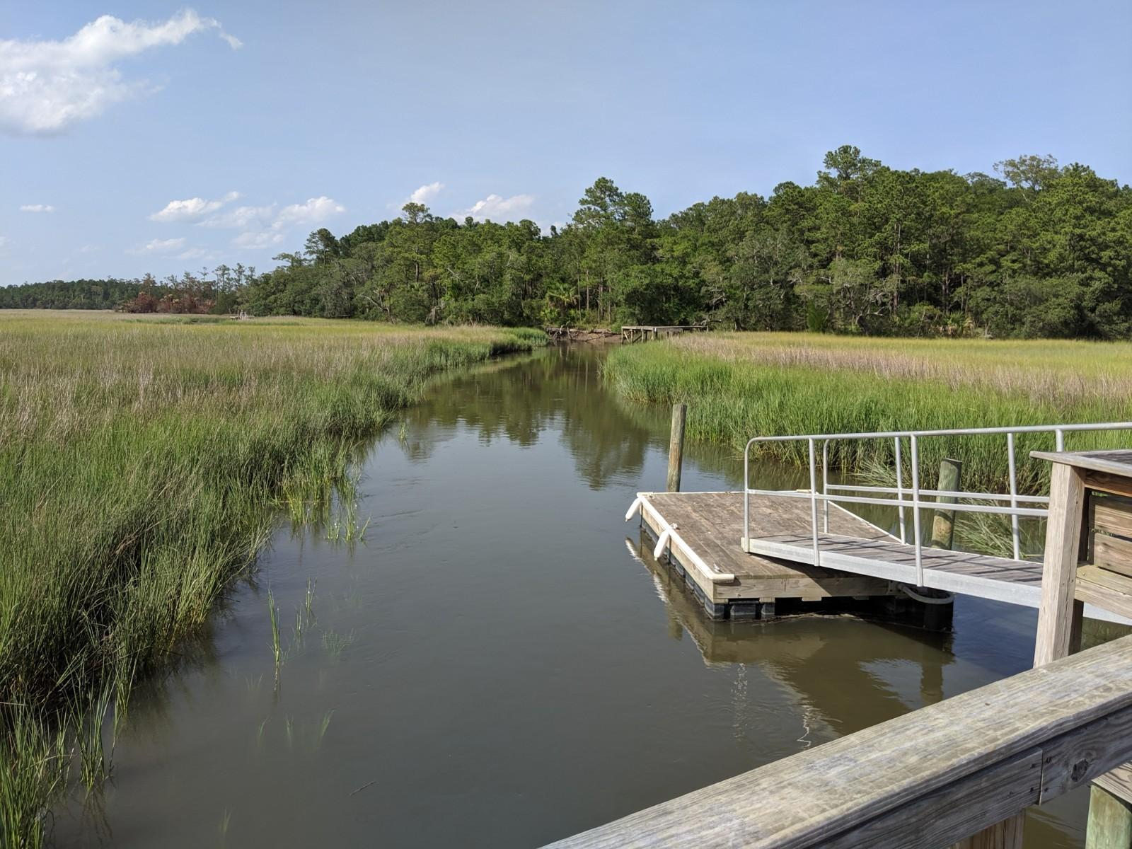 Grassy Creek Homes For Sale - 311 Shoals, Mount Pleasant, SC - 60