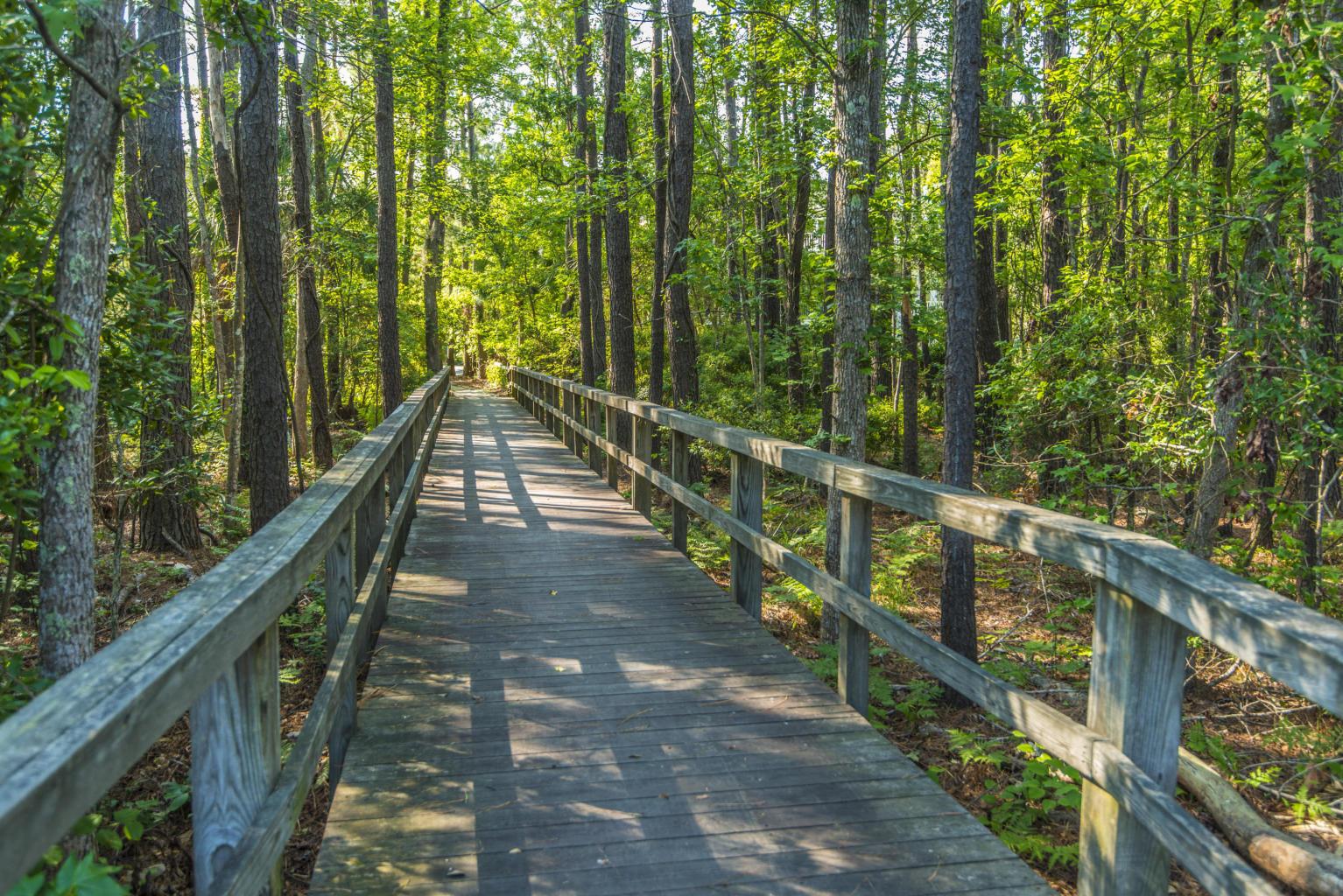 Hamlin Plantation Homes For Sale - 2028 Amenity Park, Mount Pleasant, SC - 56