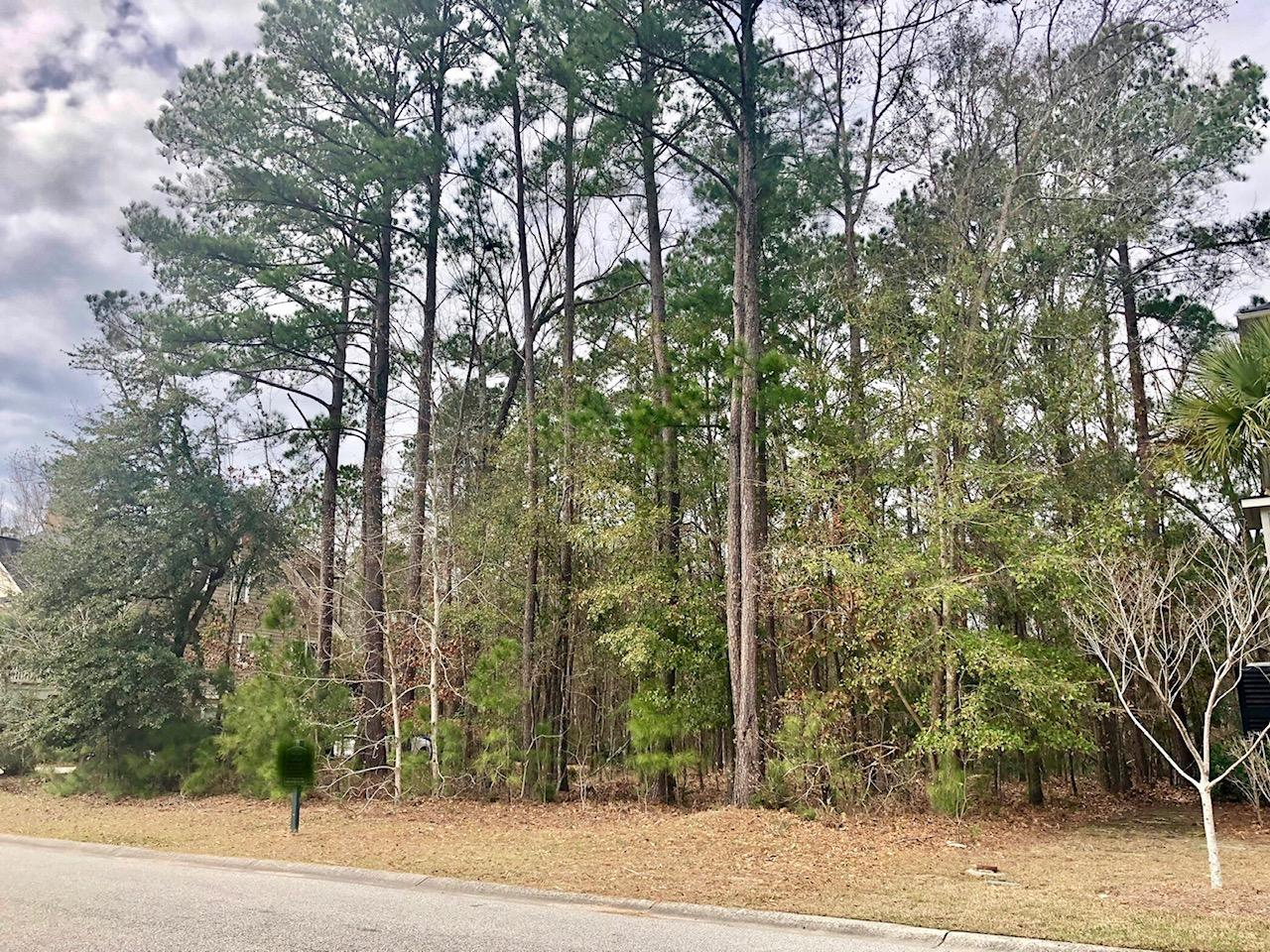 1773 W Canning Drive Mount Pleasant, SC 29466