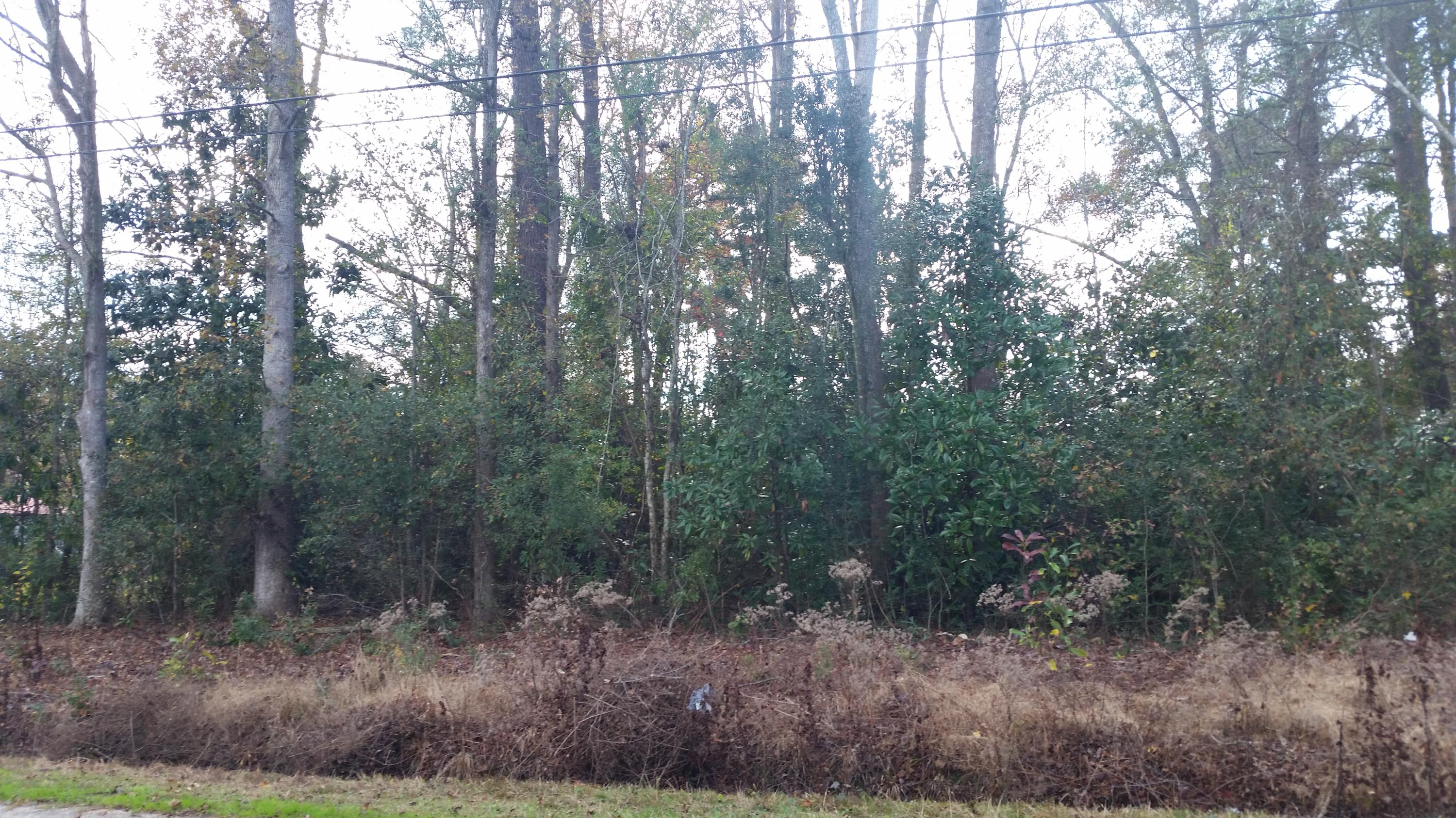 Lot 110 4TH Street Walterboro, SC 29488