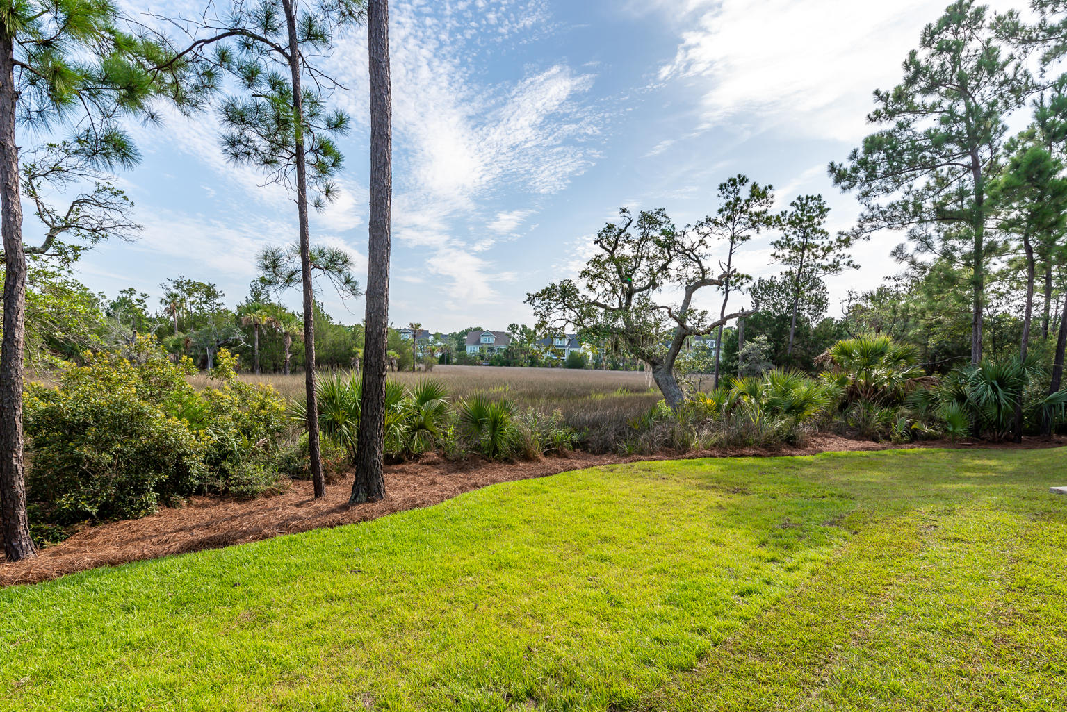 Rivertowne Country Club Homes For Sale - 1999 Creek, Mount Pleasant, SC - 0