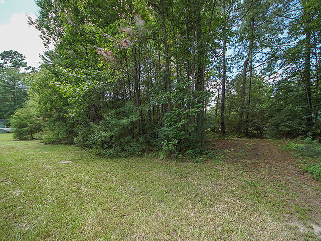 Laurel Hill Farms Homes For Sale - 2968 Bobo, Mount Pleasant, SC - 7