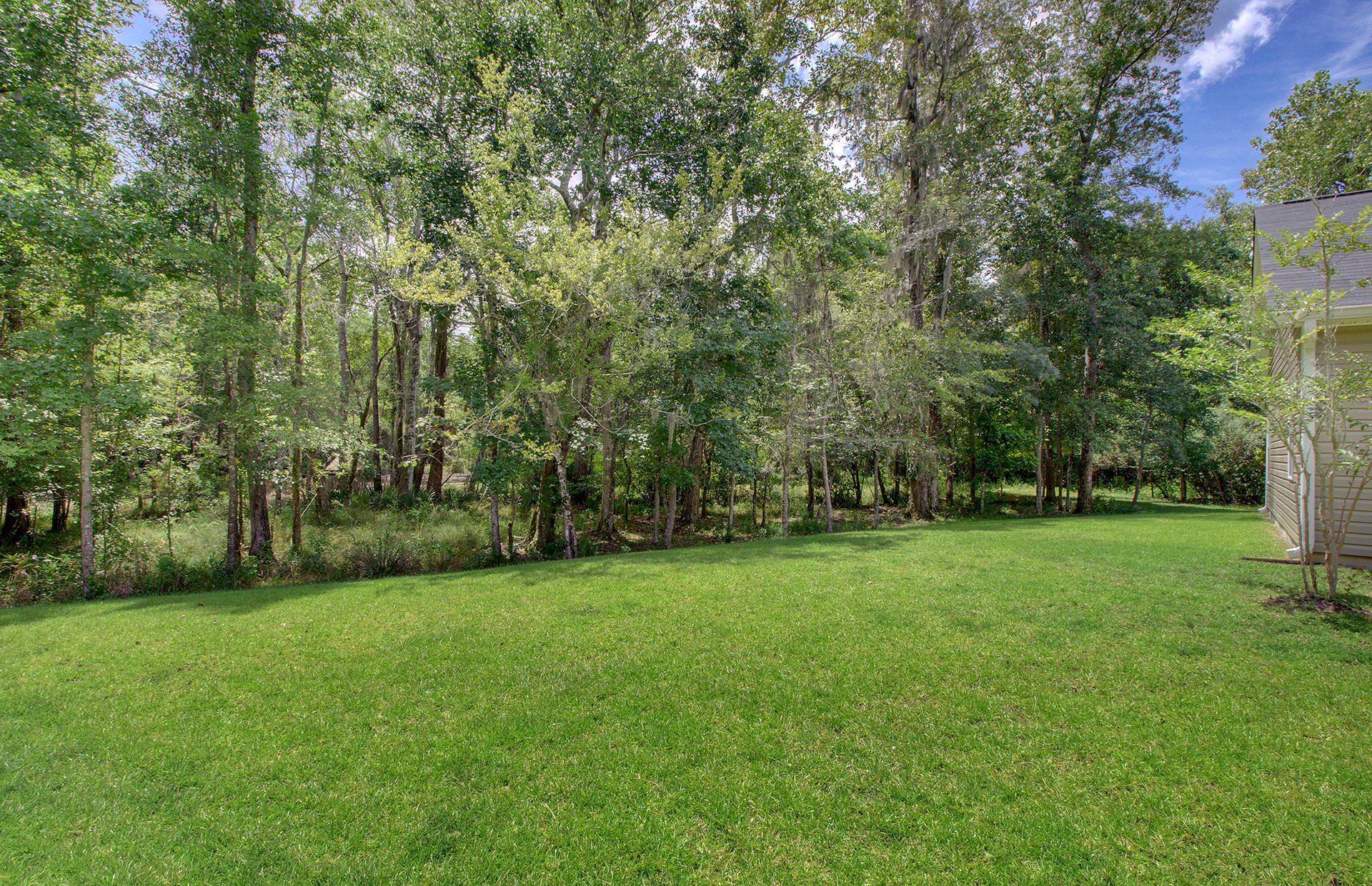719 Savannah River Drive Summerville, SC 29485