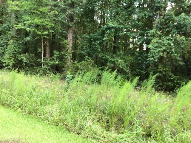 1 Rosa Green Road Awendaw, SC 29429