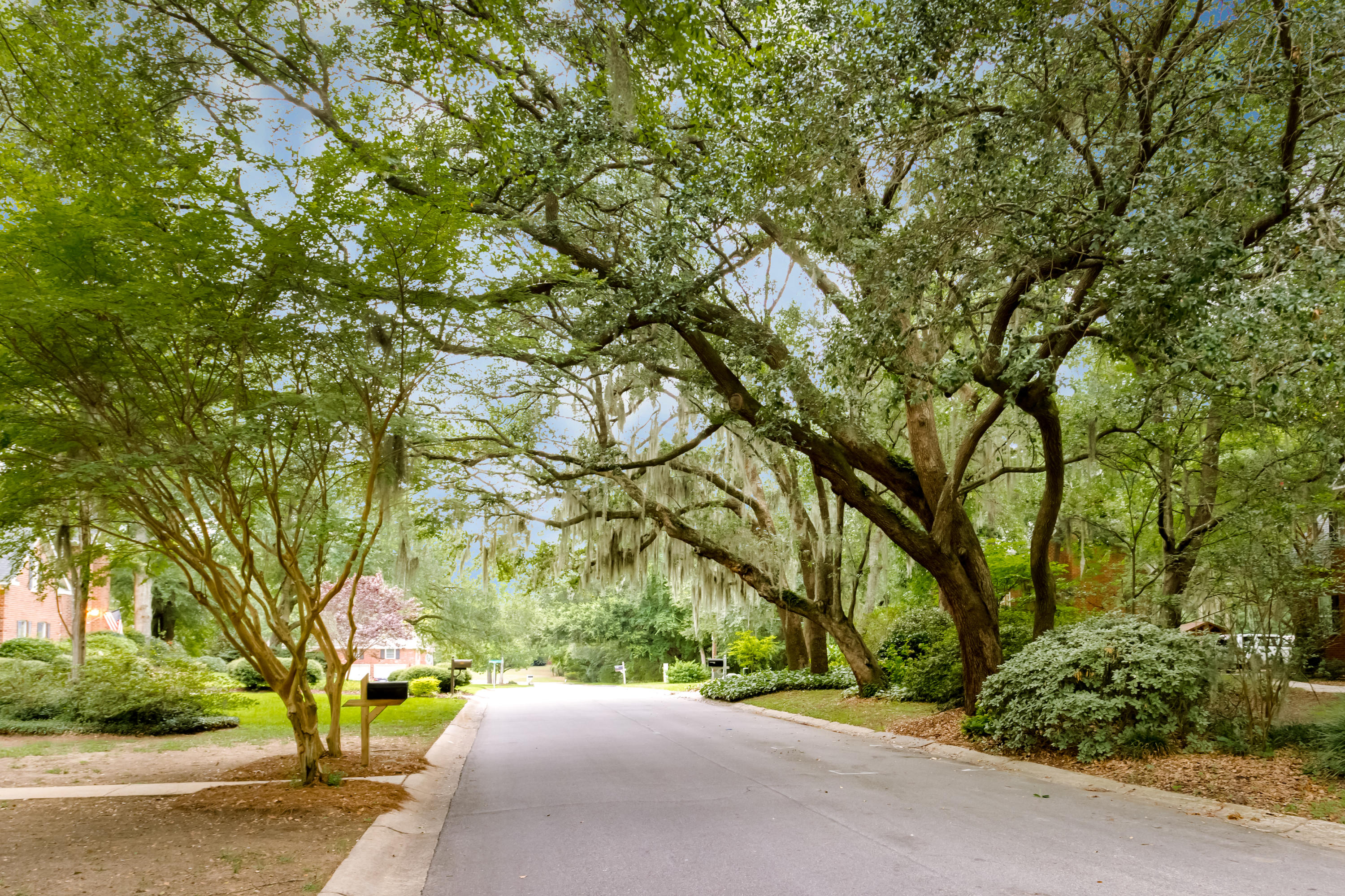 Somerset Point Homes For Sale - 693 Cain, Mount Pleasant, SC - 10
