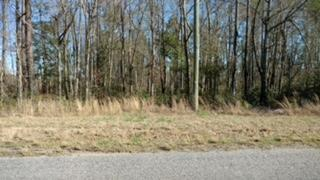 Calamus Pond Road Summerville, SC 29486
