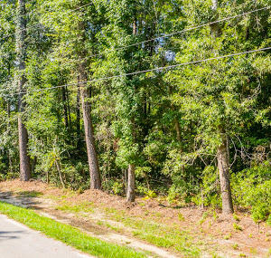 Old Fort Drive Ladson, SC 29456