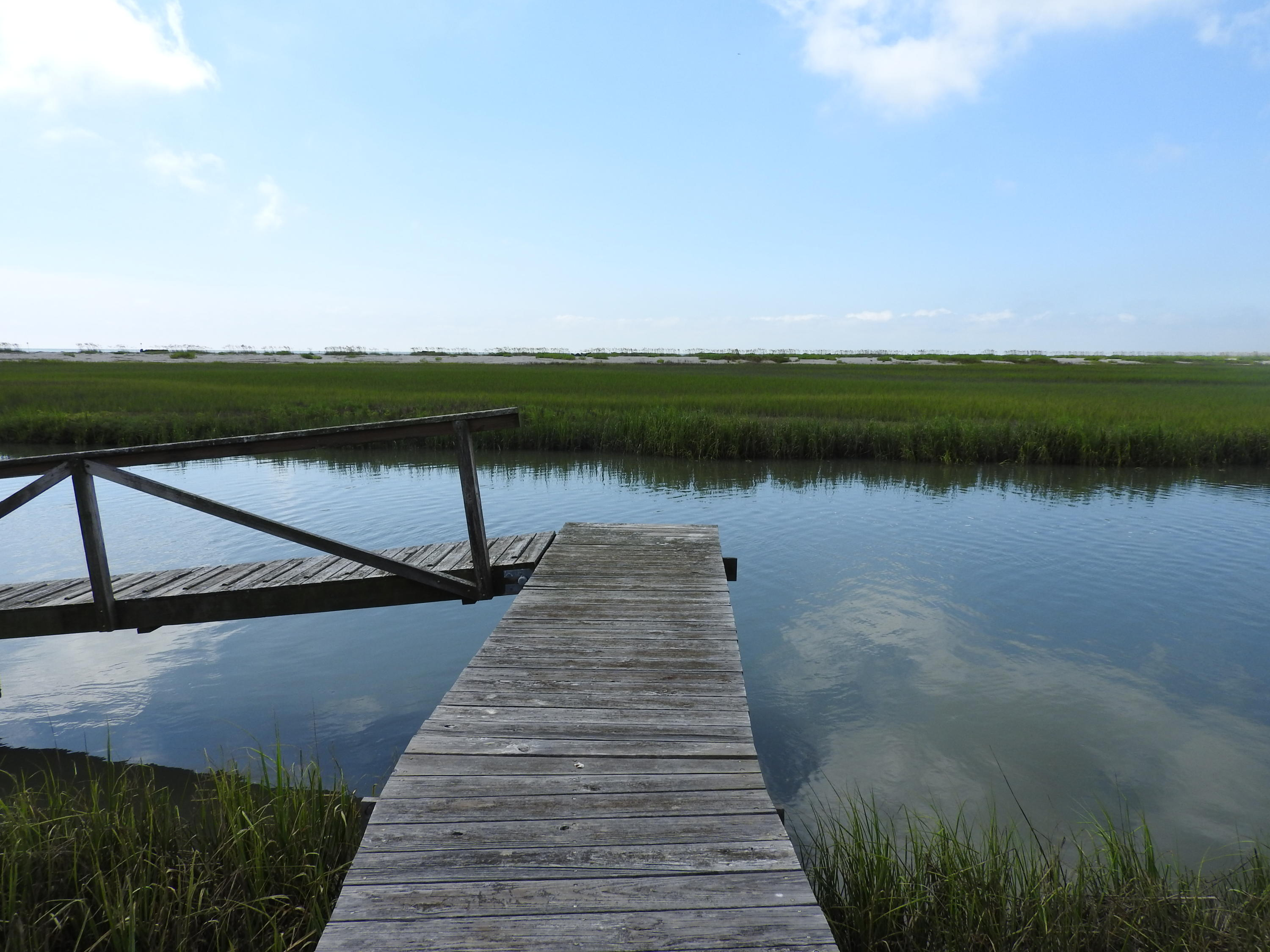 24 Hammocks Way Edisto Island, SC 29438