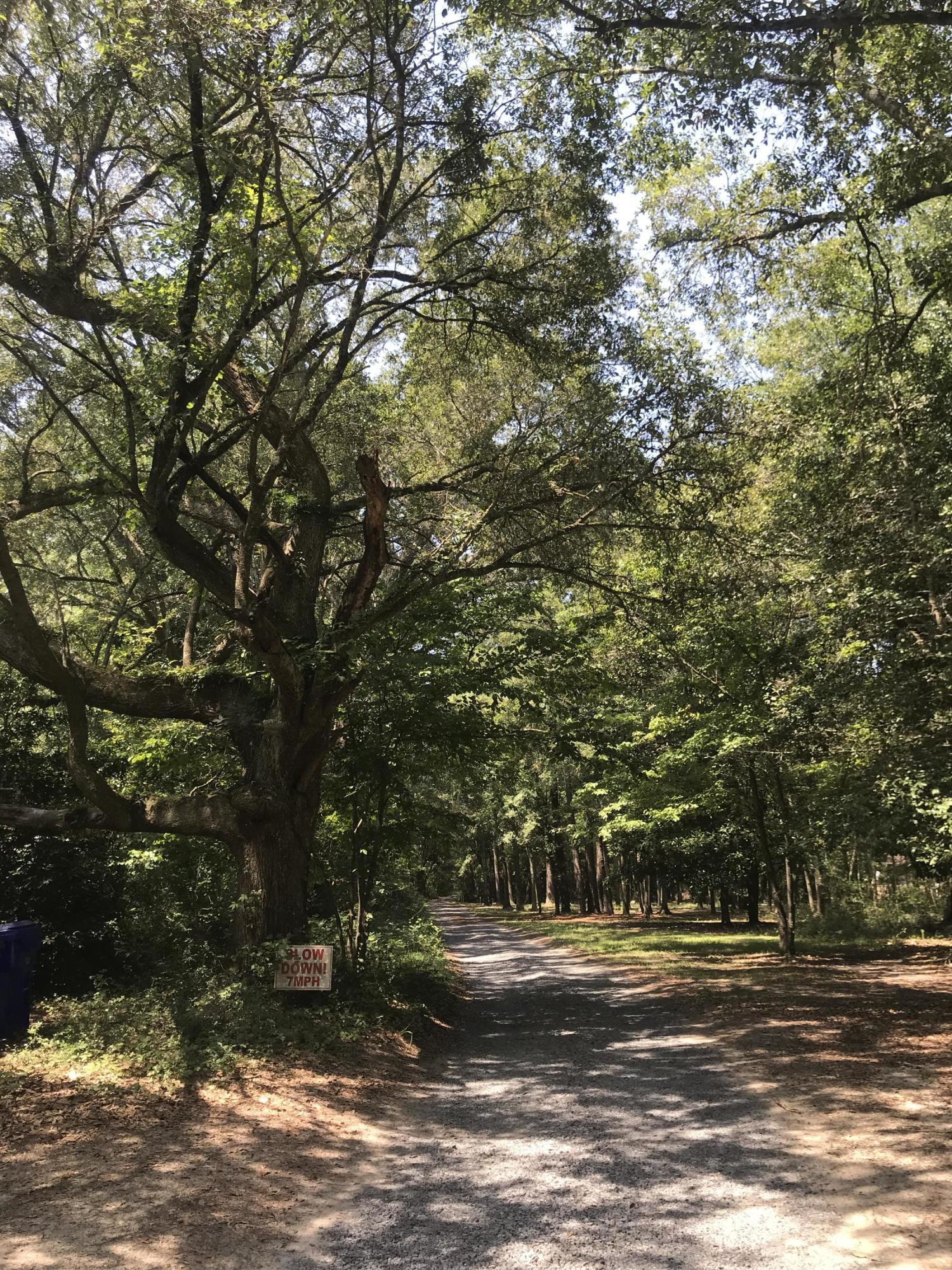 1 Pine Creek Road Johns Island, SC 29455