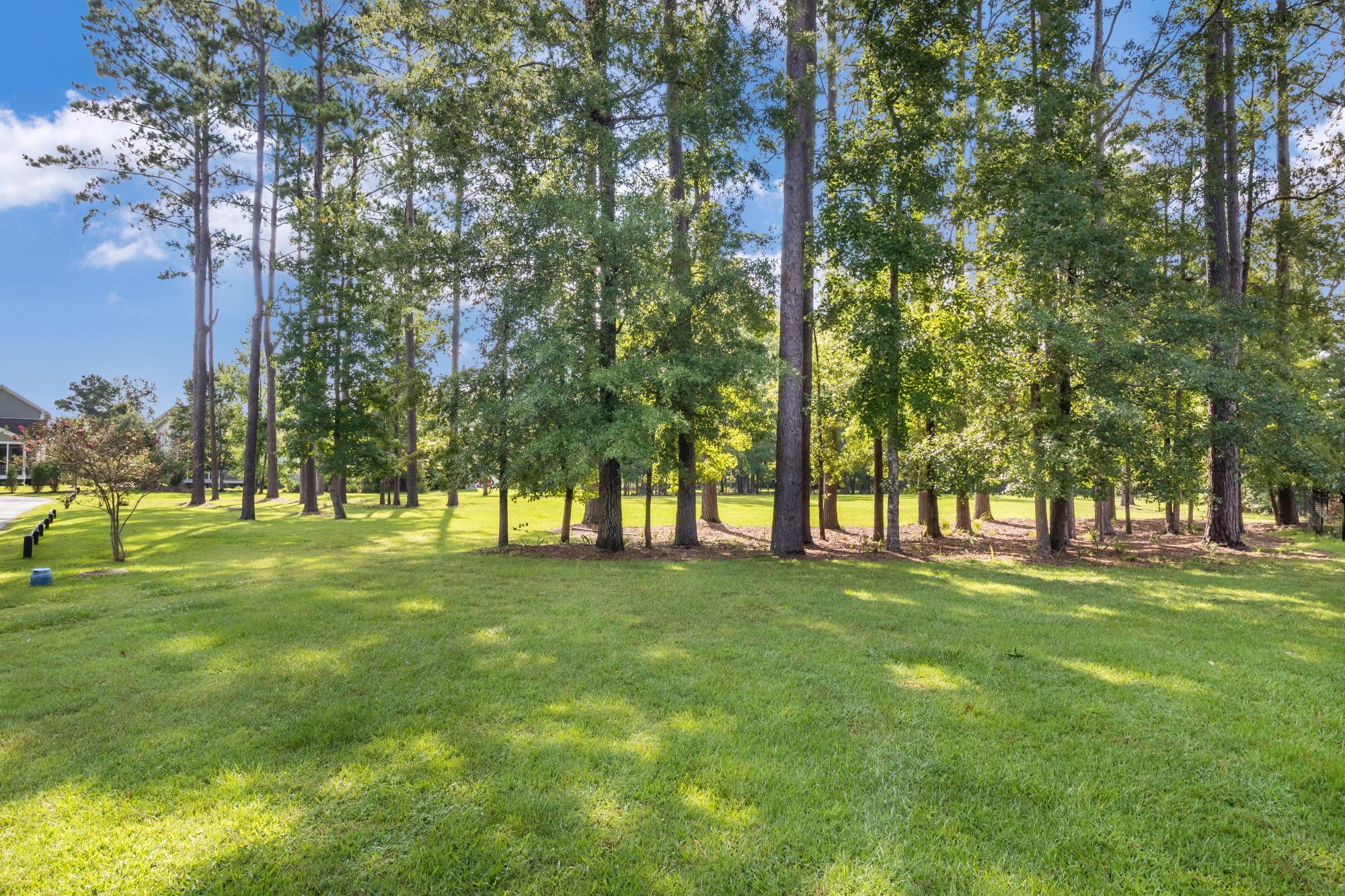 1146 Ayers Plantation Way Mount Pleasant, SC 29466