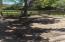 1676 Babington Way, Mount Pleasant, SC 29464