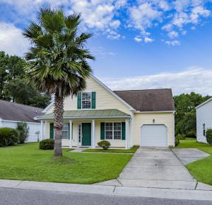 1138 Peninsula Cove Drive, Charleston, SC 29492