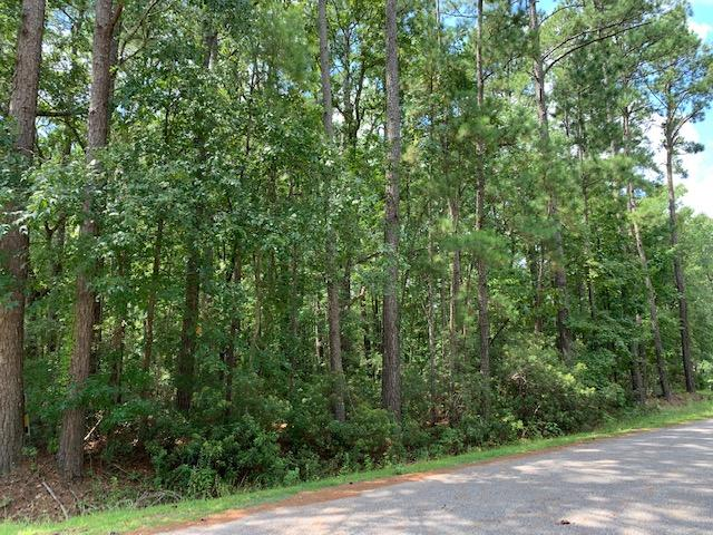 Lot 8 Picadilly Loop Summerville, SC 29483