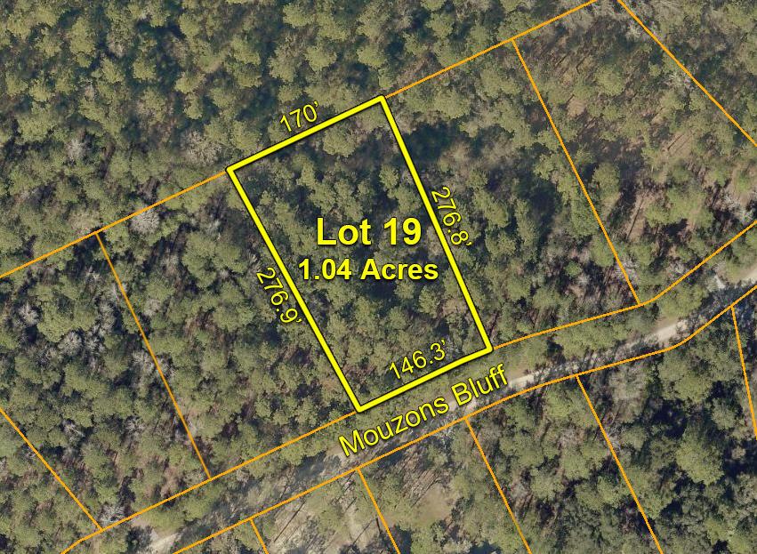 19 Mouzons Bluff Road Mcclellanville, SC 29458