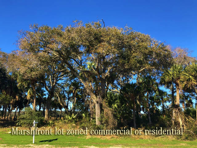 117 Jungle Road Edisto Island, SC 29438