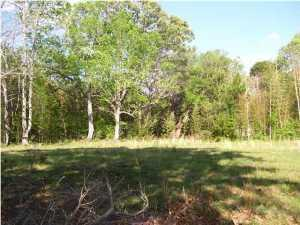 0 Highway 165 Road, Hollywood, SC 29449