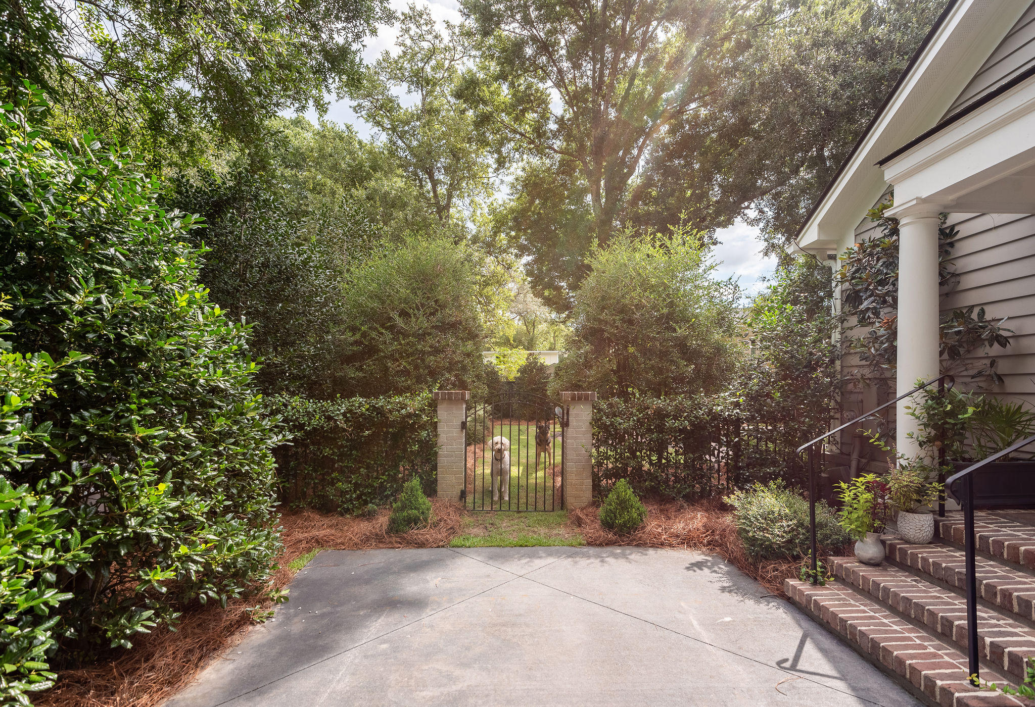 1025 Tall Pine Road Mount Pleasant, SC 29464