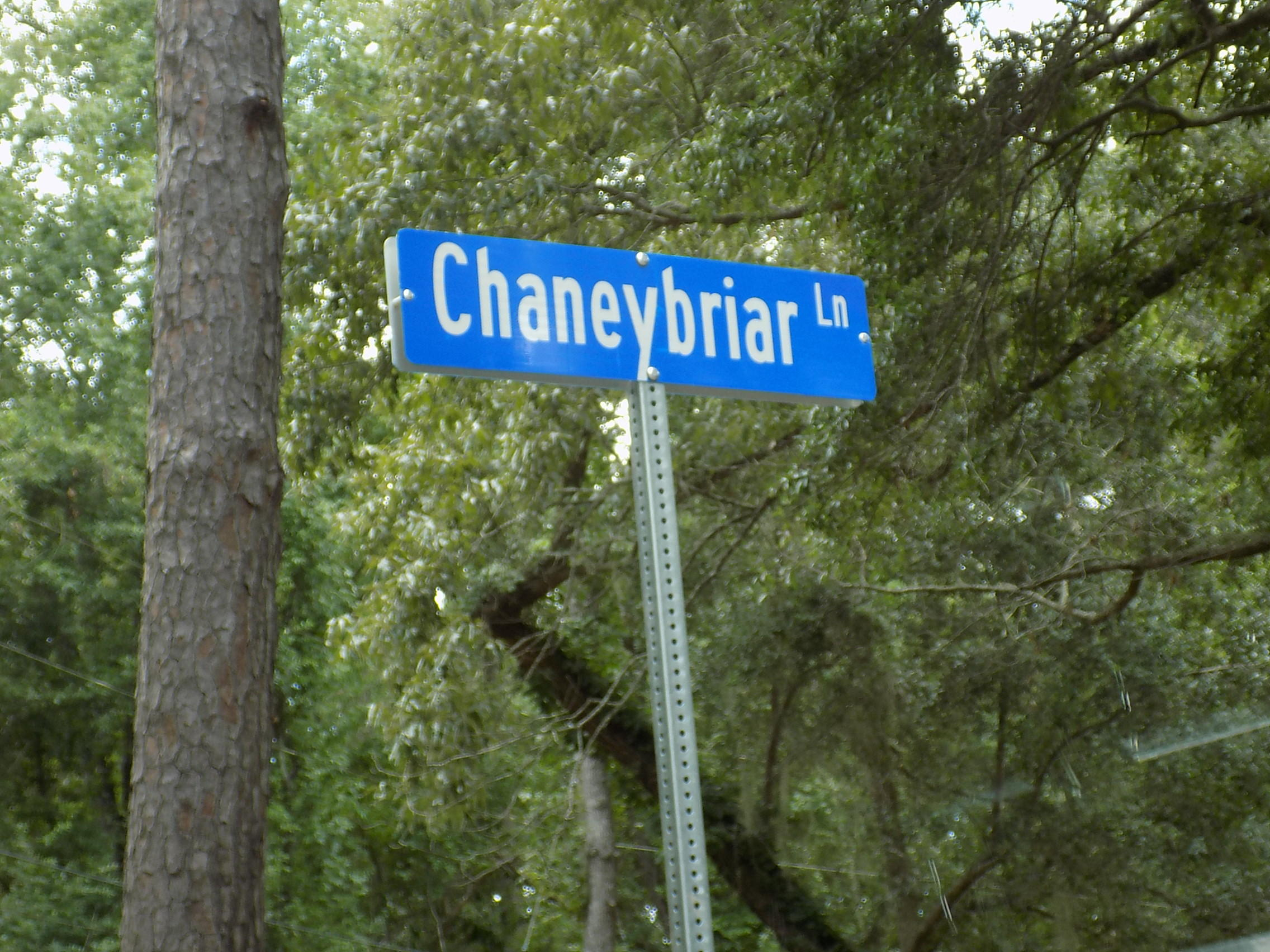 Chaneybriar Lane Johns Island, SC 29455